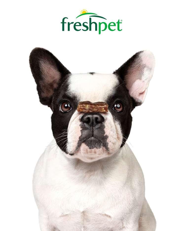 Freshpet Dog Joy Portrait_Turkey Apple