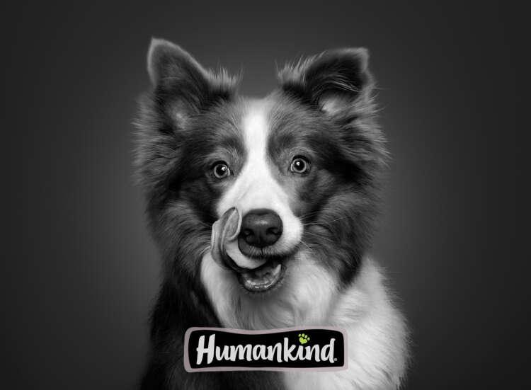 Humankind Title Card
